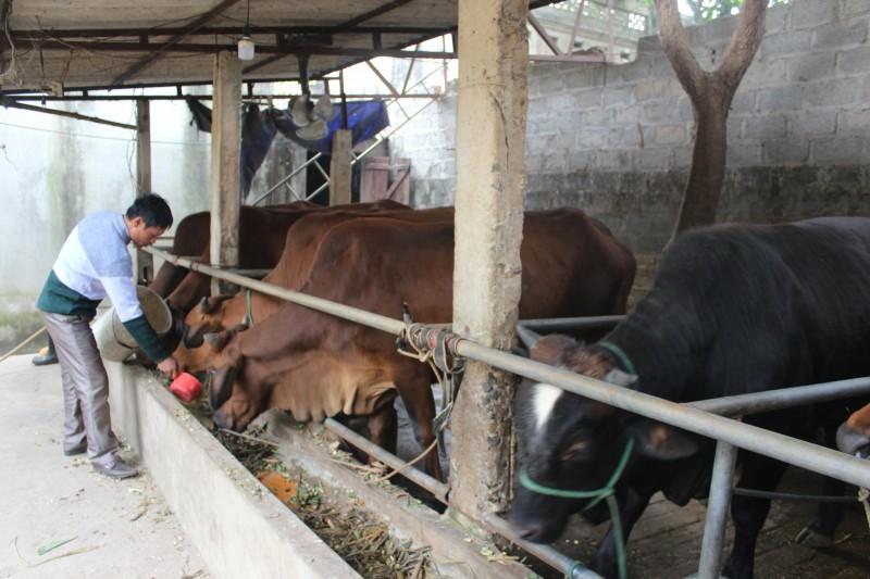 Huyện Ba Vì: Đồng thuận trong xây dựng nông thôn mới