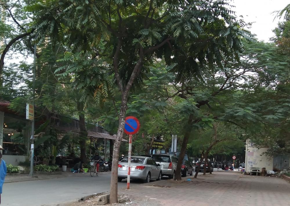 Phớt lờ biển cấm, nhiều ô tô vẫn dừng đỗ dưới lòng đường