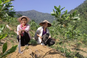Hơn 700 nghìn USD giúp cộng đồng dân tộc thiểu số nâng cao quản lý đất rừng