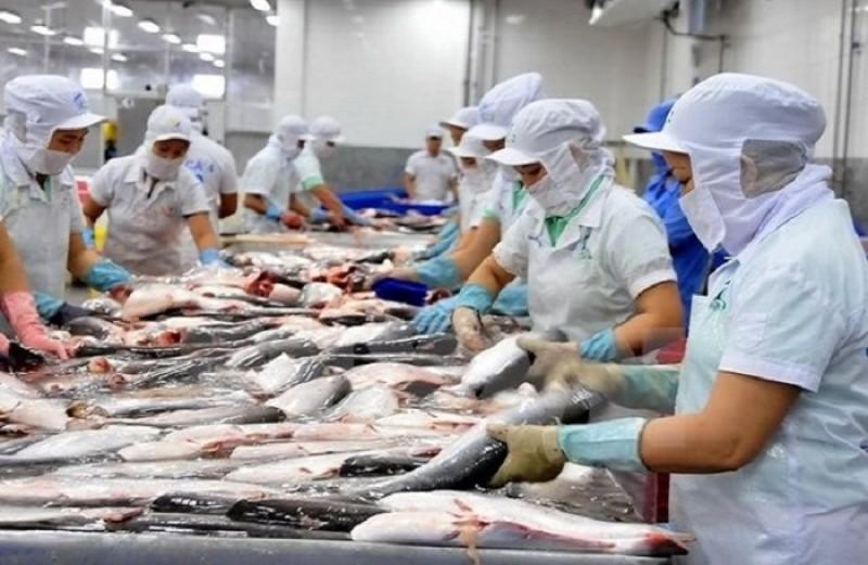 Kim ngạch xuất khẩu nông lâm thủy sản tháng 3 ước đạt 3,1 tỷ USD