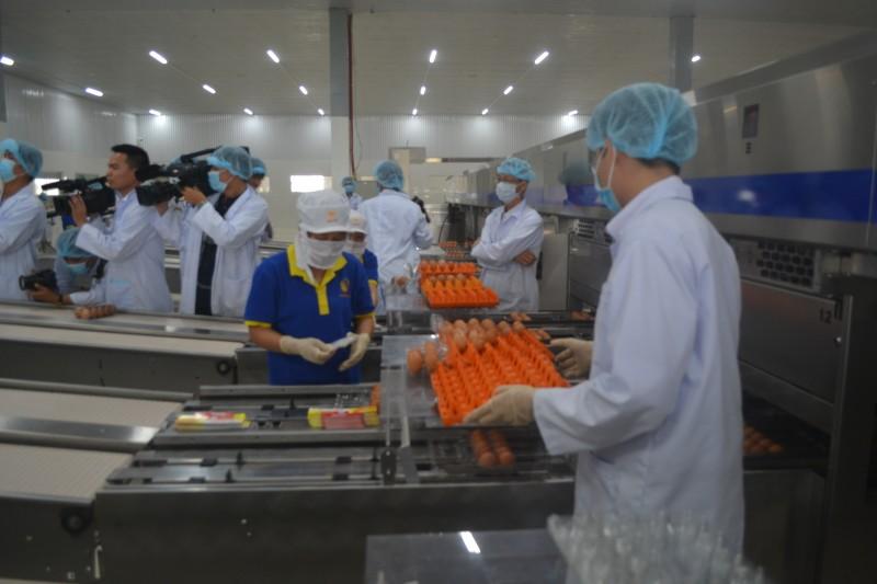 Khánh thành nhà máy xử lý trứng công nghệ cao