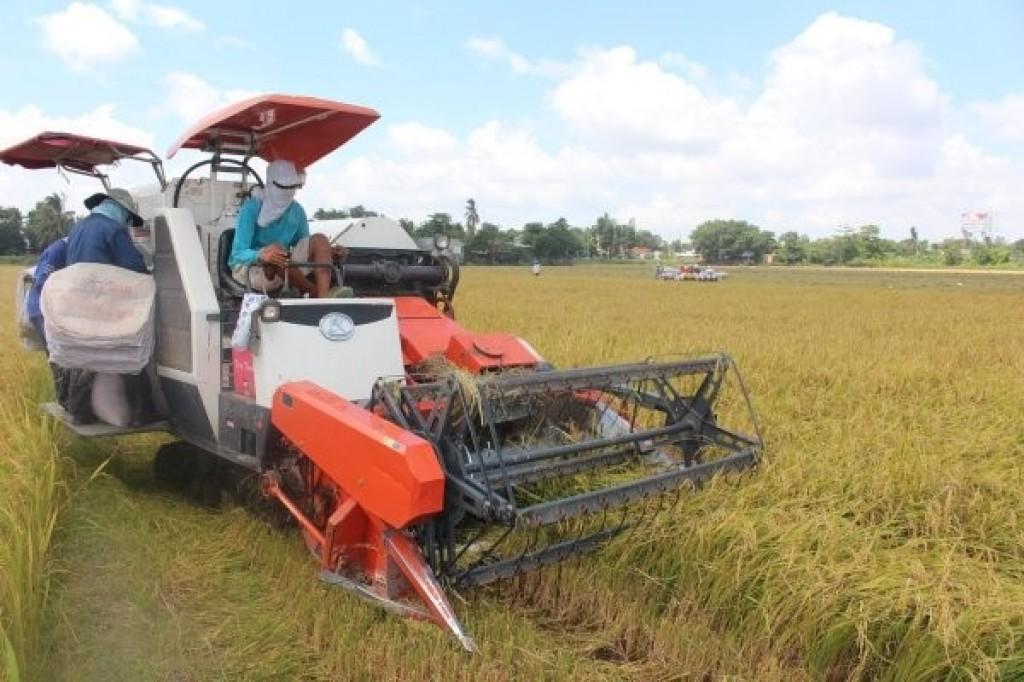 5 tháng đầu năm ngành nông nghiệp xuất siêu gần 3,5 tỷ USD