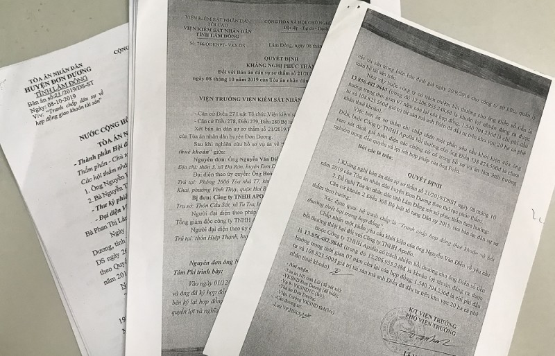 Tòa án huyện Đơn Dương chưa đánh giá toàn diện các chứng cứ