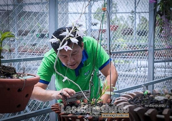 Đại võ sư Nguyễn Bá Mạnh: Tìm đến thú chơi lan rừng để cân bằng cuộc sống