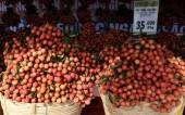 Hỗ trợ thúc đẩy mở cửa thị trường cho nông sản Việt sang Úc
