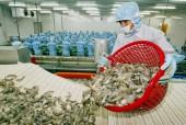 Siết điều kiện nhập khẩu tôm vào Úc