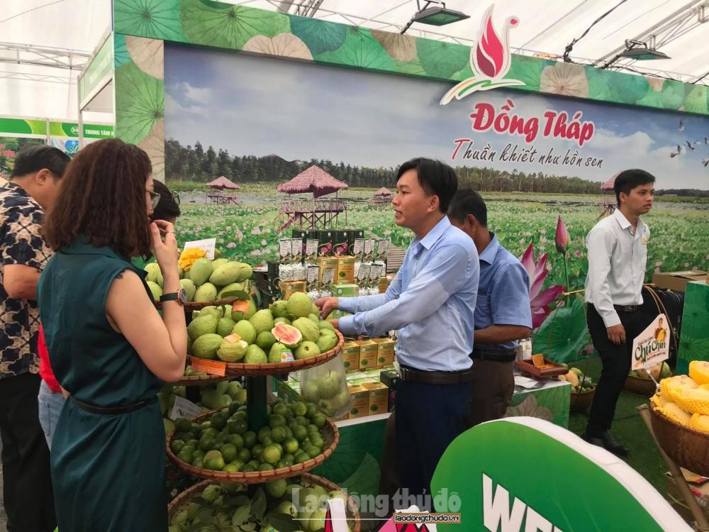 Tăng cường kết nối, tiêu thụ trái cây, nông sản các tỉnh tại Hà Nội