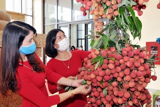 Sàn thương mại điện tử phối hợp cùng siêu thị hỗ trợ tiêu thụ vải thiều