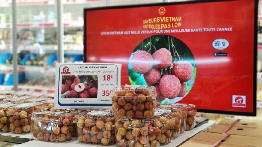 Doanh nghiệp Pháp đẩy nhanh kế hoạch nhập khẩu vải thiều Việt Nam