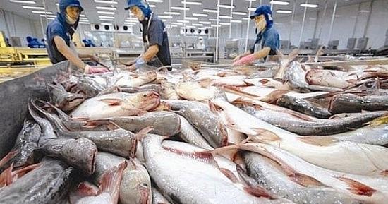 Kết quả tích cực đối với ngành sản xuất, xuất khẩu thủy sản Việt Nam