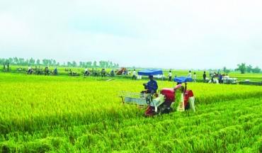 6 điều kiện đầu tư kinh doanh trong lĩnh vực Nông nghiệp