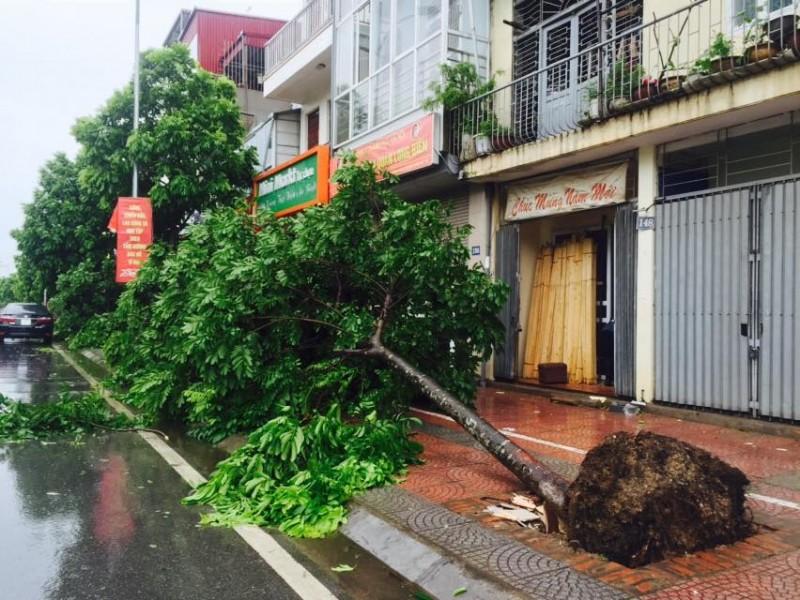 Phó Thủ tướng Trịnh Đình Dũng: Không để xảy ra bị động với cơn bão số 3