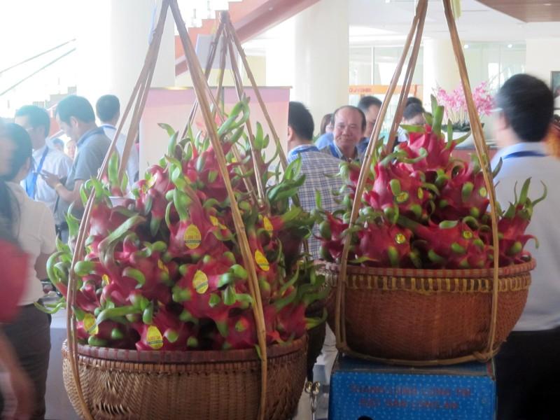 Việt Nam là nước đầu tiên được Australia cho phép nhập khẩu thanh long