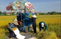 Huyện Thanh Trì: Chú trọng xây dựng hệ thống chính trị vững mạnh