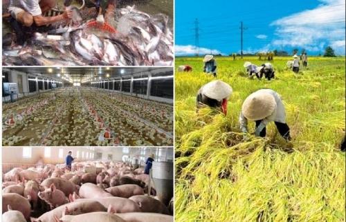 Đối thoại thách thức và hướng tận dụng hiệu quả EVFTA trong nông nghiệp