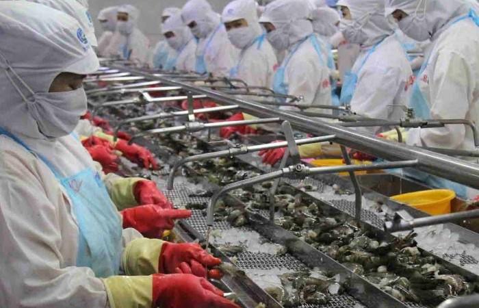 Tổng kim ngạch xuất nhập khẩu của Việt Nam vượt mốc 500 tỷ USD