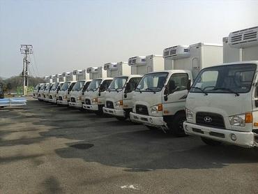 Xe ô tô tải nhập khẩu bất ngờ tăng mạnh