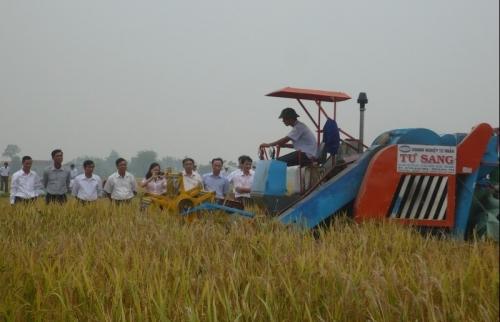 Huyện Thường Tín: Tăng tốc hoàn thành mục tiêu nông thôn mới vào năm 2020