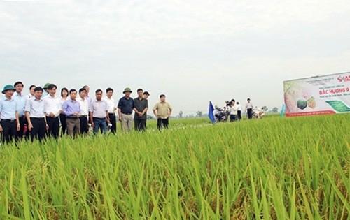Xã Quảng Bị (Chương Mỹ): Phấn đấu trở thành xã nông thôn mới kiểu mẫu