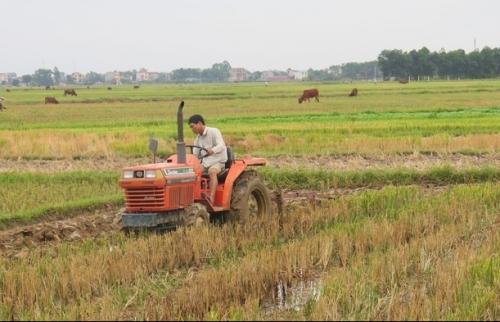 Sóc Sơn phấn đấu đưa 5 xã về đích nông thôn mới trong năm 2019