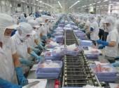 Nâng cao trách nhiệm xã hội trong phát triển thủy sản