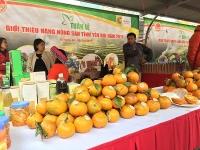 Tháng 8/2020 xuất khẩu rau quả đạt 280 triệu USD