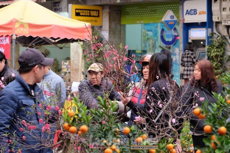 Phố phường Hà Nội rộn ràng ngày giáp Tết