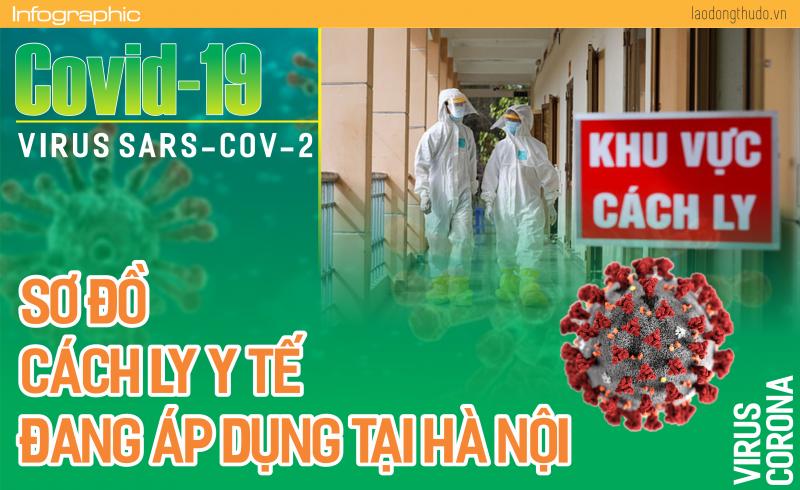 Infographic: Sơ đồ phân loại cách ly người nhiễm Covid - 19