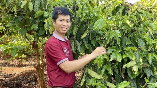 Khát vọng nâng tầm cà phê Việt
