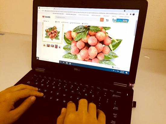 Vải thiều Bắc Giang được phân phối bài bản trên 6 sàn thương mại điện tử