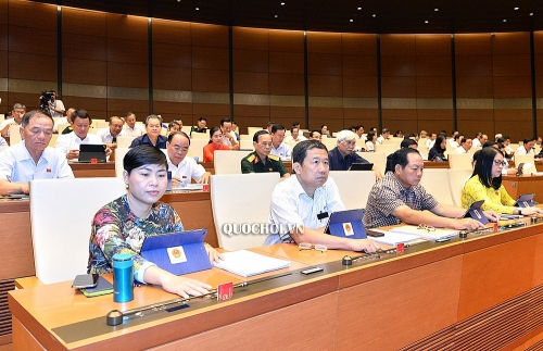 Bước tiến lớn nhằm xóa bỏ lao động cưỡng bức tại Việt Nam