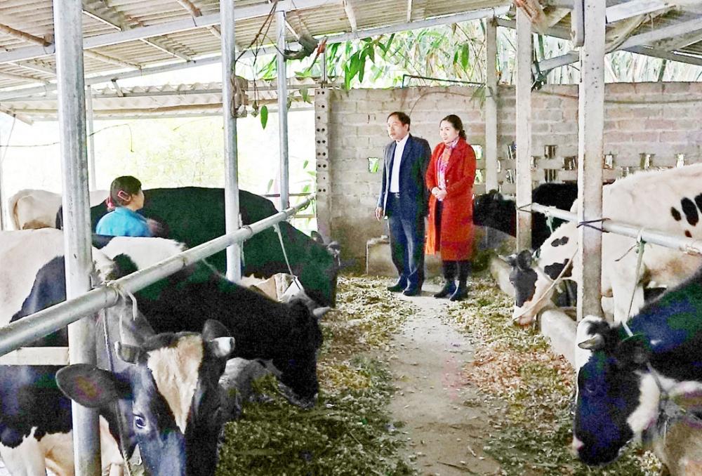 Xây dựng nông thôn mới gắn với bảo vệ môi trường