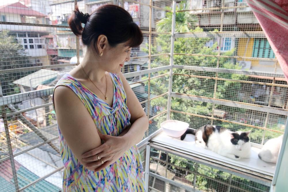 """""""Mẹ"""" của hàng trăm con mèo bị bỏ rơi"""