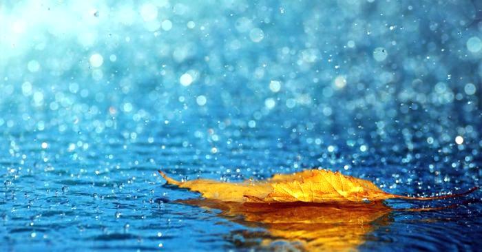 Mình đã đi qua bao chiều mưa?