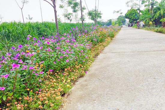 Chung tay nối dài những tuyến đường hoa