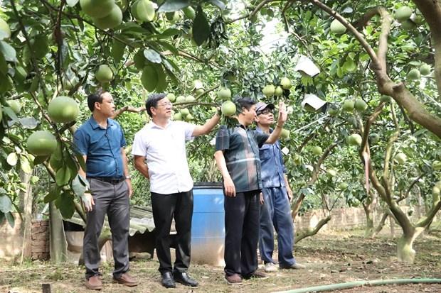 Xã Yên Sở đạt chuẩn Nông thôn mới nâng cao