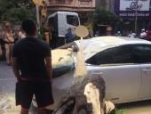 Hà Nội: Cây xanh bật gốc đè bẹp siêu xe