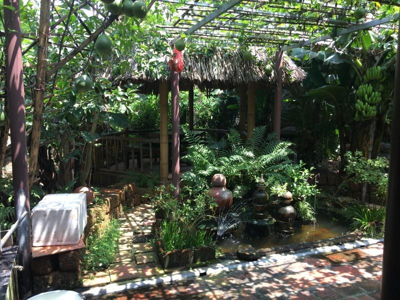 Hấp dẫn du lịch trải nghiệm tại Đường Lâm