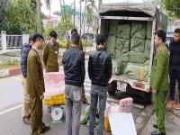 Thu giữ hơn 3 tấn nầm lợn nhập lậu từ Lạng Sơn về Hà Nội tiêu thụ