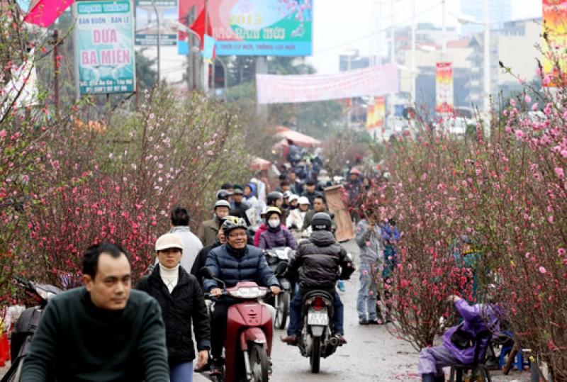 Chợ hoa Quảng An ngập tràn hoa đào ngày cận Tết