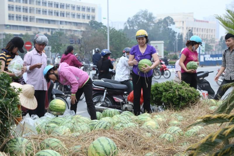 """Sinh viên Hà Nội lập chiến dịch """"giải cứu"""" dưa hấu"""