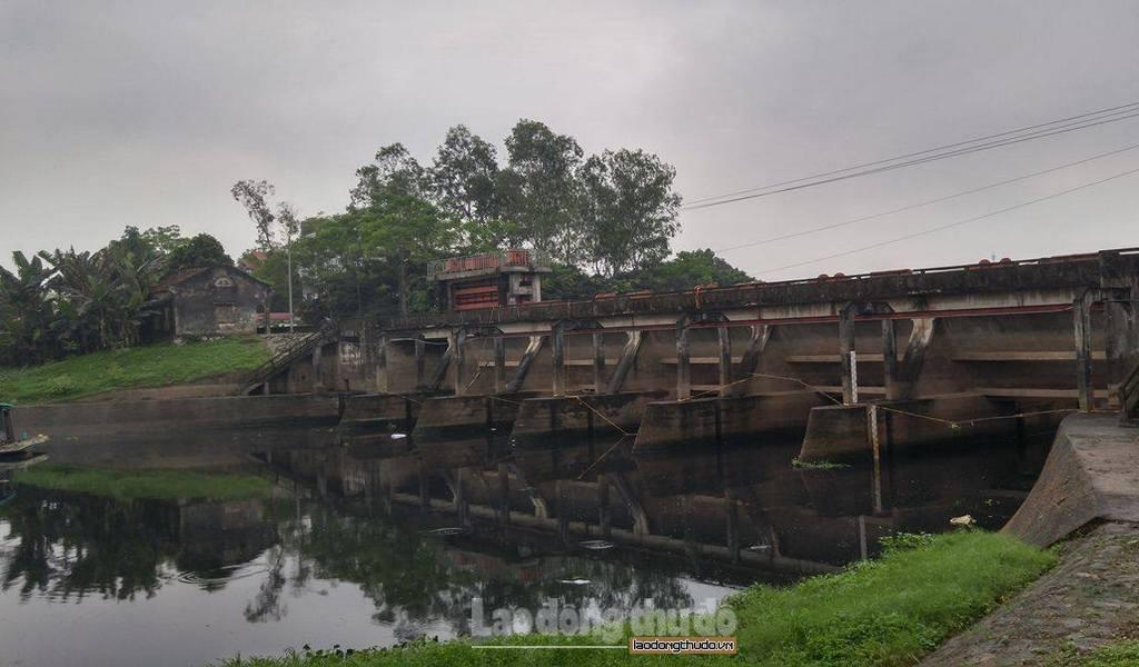 Báo động tình trạng ô nhiễm ở sông Nhuệ
