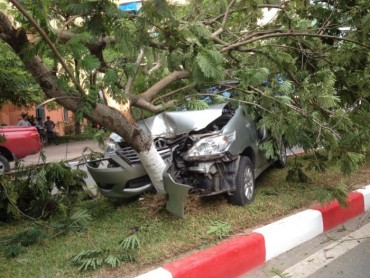 """Hà Nội: Ô tô mất lái """"đốn gục"""" cây ven đường"""