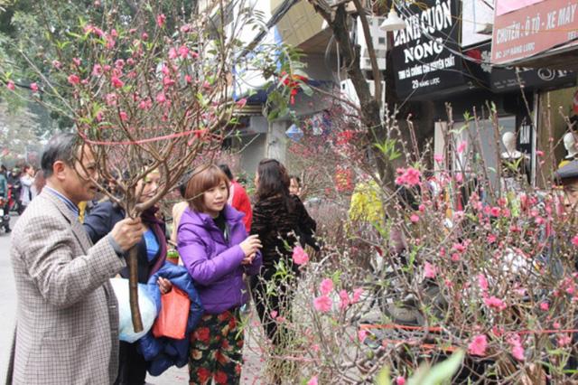6 chợ hoa Xuân nức tiếng Hà Thành