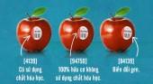 Cách nhận biết thực phẩm đột biến gen bằng mắt thường các bà nội trợ cần biết