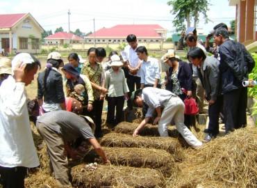 Chú trọng lao động nông nghiệp