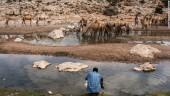 Hạn hán kinh hoàng ở Somalia, 110 người thiệt mạng