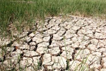 Việt Nam đối mặt với nguy cơ thiếu nước trên diện rộng