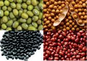 Ăn các loại đậu giúp kiểm soát đường huyết