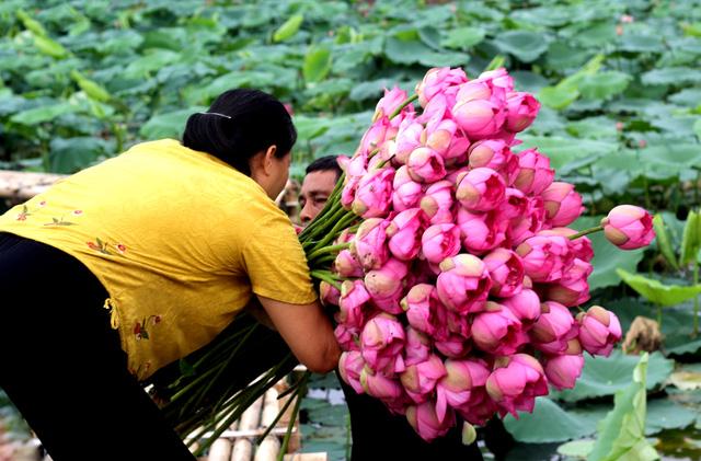 5 cong viec luong cao khong can bang dai hoc